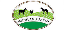 Miniland Farm, enjoy a range of outdoor activities including; climbing, meeting animals, art groups etc.