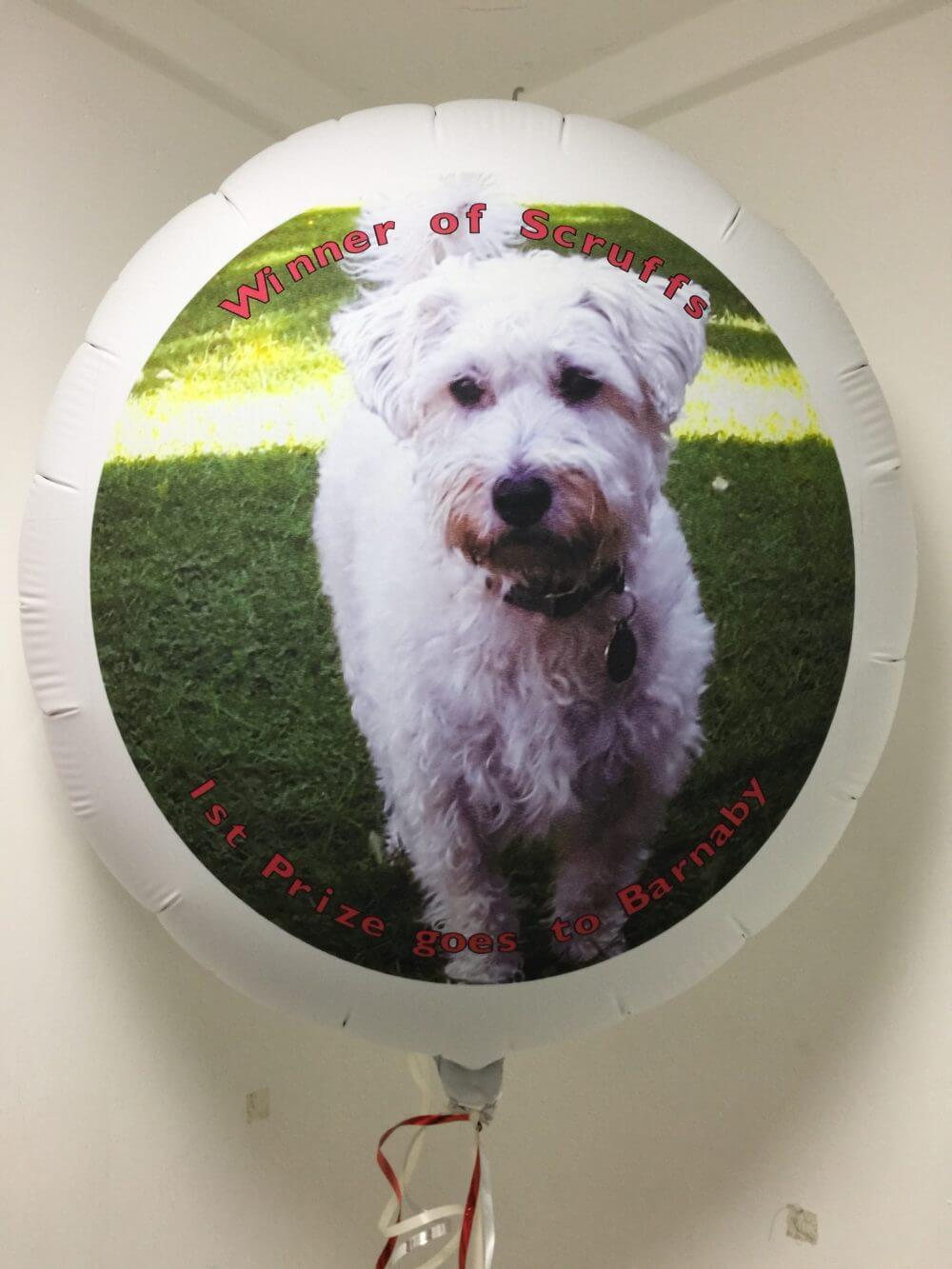 Barnaby on a personalised balloon